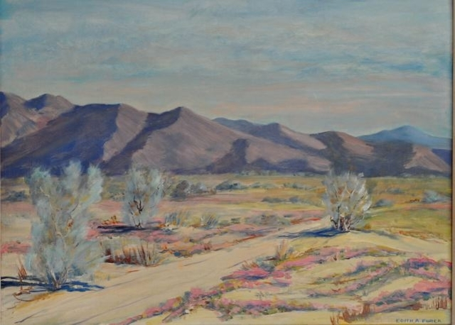 Borrego Desert by Edith Purer